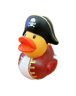 Pirate Duck