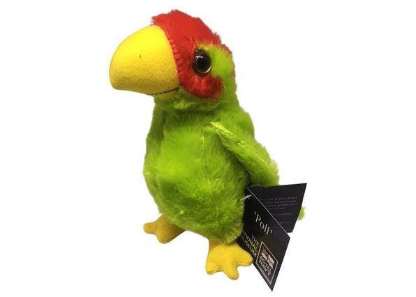 Poll The Parrot